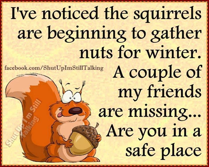 Funny Winter Quotes Funny Winter Quote Pictures, Photos, and Images for Facebook  Funny Winter Quotes