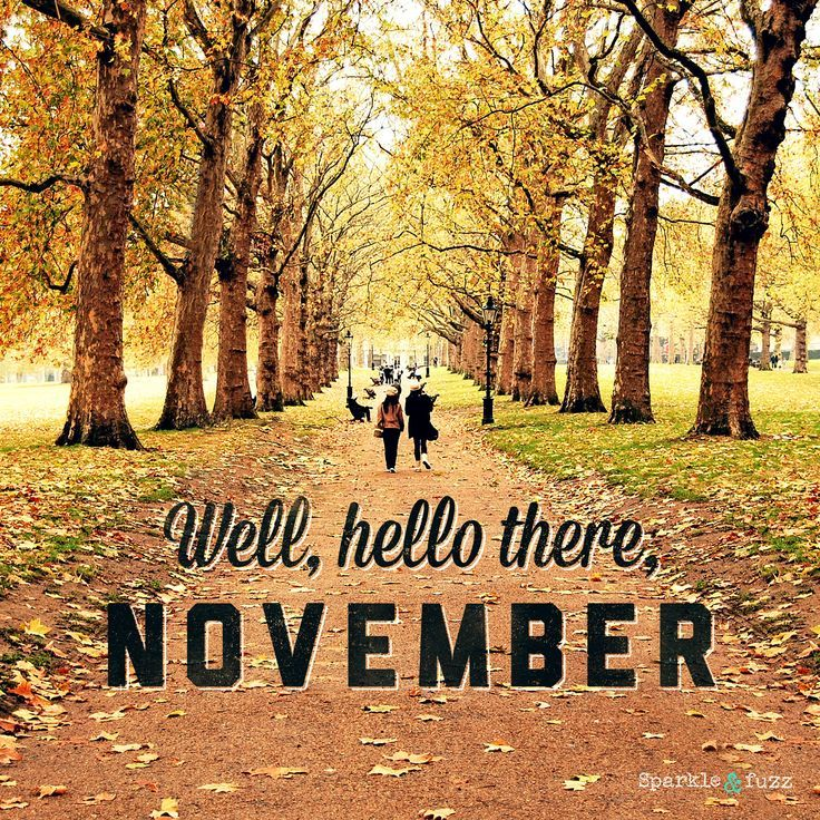Well, Hello There November