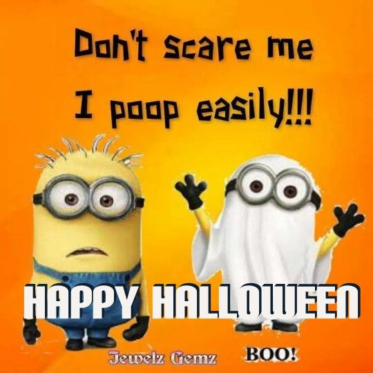 50 Best Happy Halloween Quotes Wishes Greetings And Sayings With Pictures: Don't SCare Me I Poop Easily Pictures, Photos, And Images