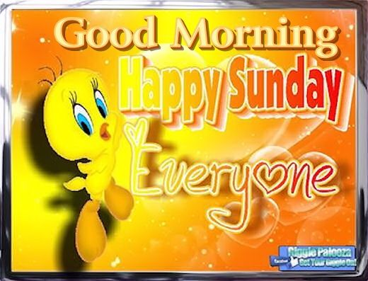 Tweety Good Morning Happy Sunday Pictures, Photos, and