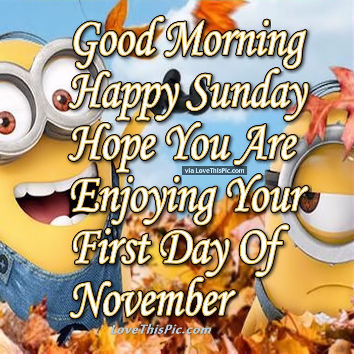 Good Morning Happy Sunday First Day Of November Pictures ...