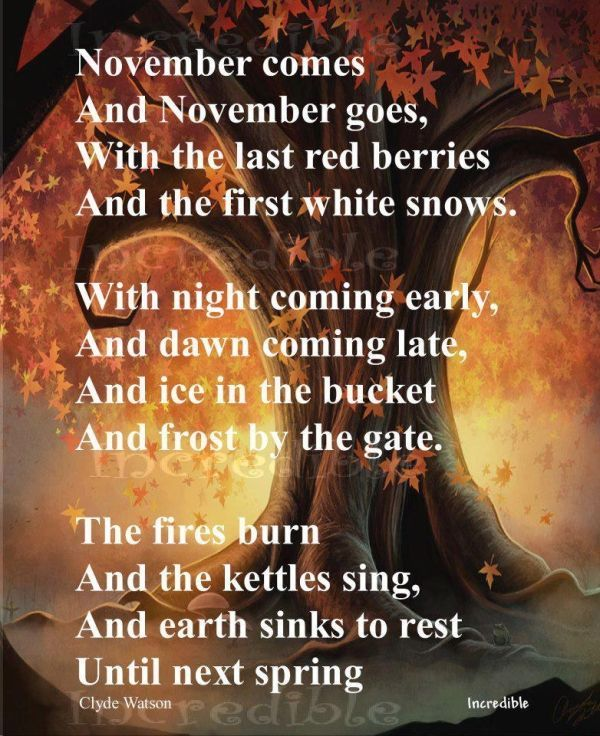 November Comes And November Goes Pictures, Photos, And