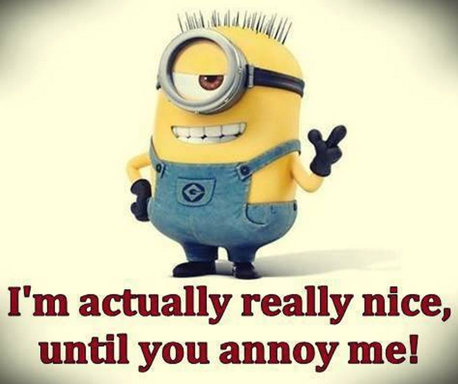 dentist love quotes for valentines day - Minion I Am Nice Until You Annoy Me s and