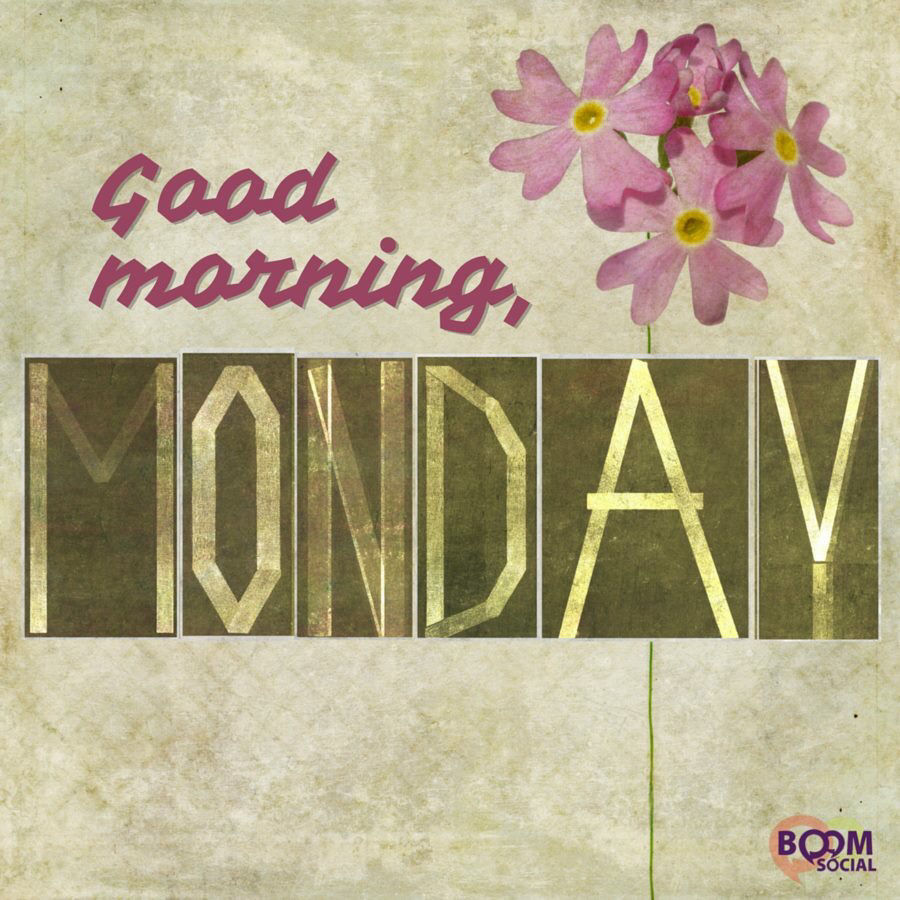 Good Morning Monday Image Pictures Photos And Images For Facebook Tumblr Pinterest And Twitter
