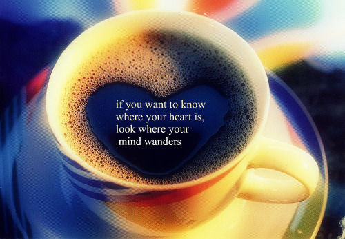 If You Want To Know Where Your Heart Is Look Where Your: If You Want To Know Where Your Heart Is Pictures, Photos