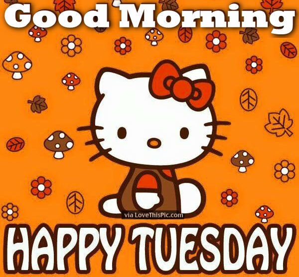 Good Morning Everyone Happy Tuesday : Tuesday everyone pictures photos and images for facebook