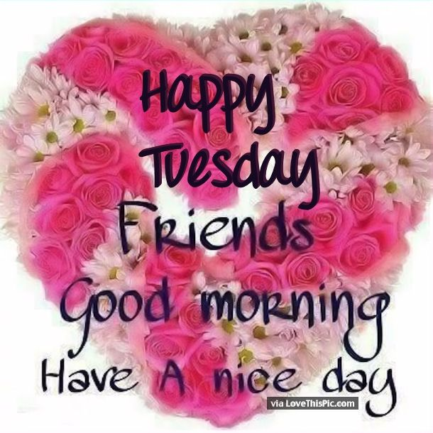Happy Tuesday Friends Good Morning Pictures Photos And Images For