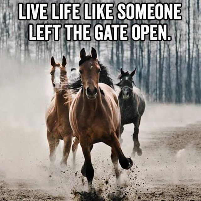 Live Like Someone Left The Gate Open Quote
