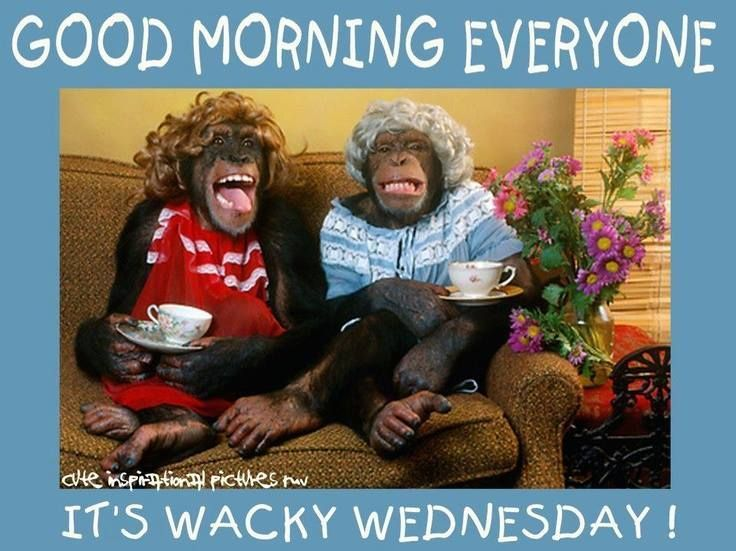 Good Morning Everyone Clipart : Good morning everyone its wacky wednesday pictures