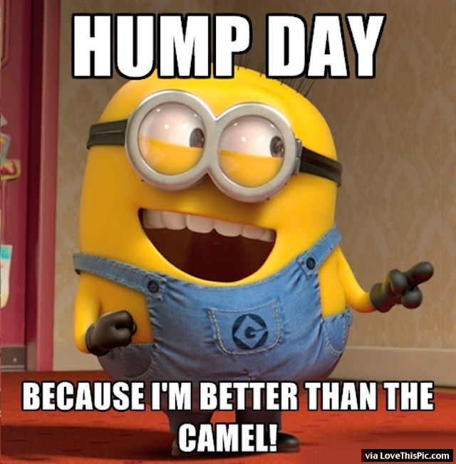 Best Hump Day Quotes: Hump Day Minion Pictures, Photos, And Images For Facebook