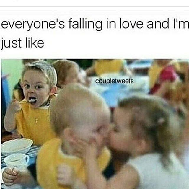 Falling In Love Funny Meme : Everyone s falling in love and i m just like pictures