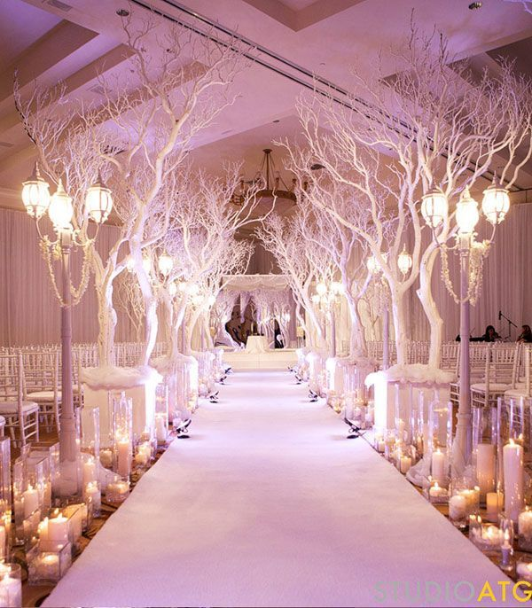 Wedding aisle for winter pictures photos and images for facebook wedding aisle for winter junglespirit Image collections