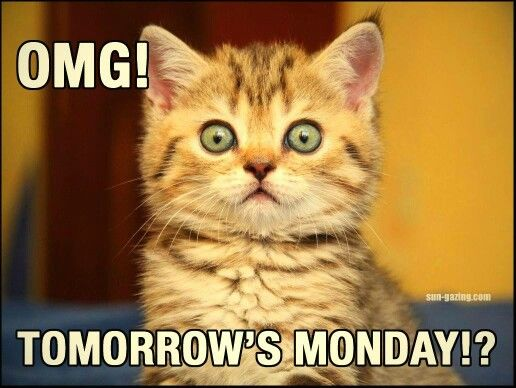 OMG Tomorrows Monday Pictures, Photos, and Images for ...