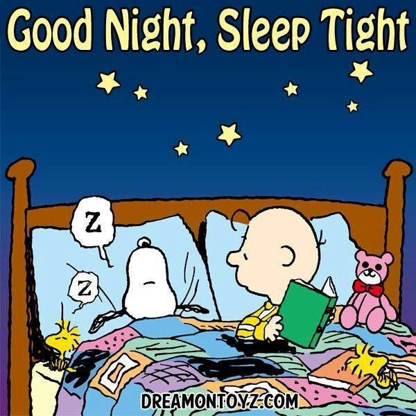 Goodnight sleep tight pictures photos and images for facebook