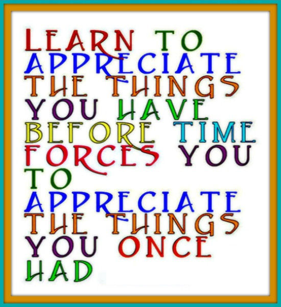 Learn To Appreciate Things Quotes