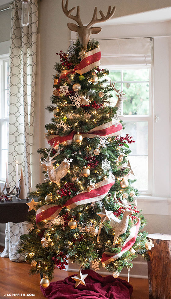 Beautiful Christmas Tree Pictures Photos And Images For
