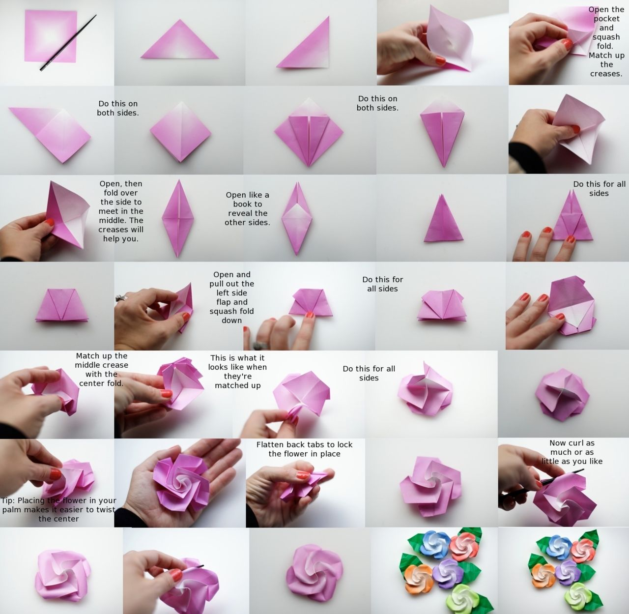 Diy Bird Base Rose Paper Flower Pictures Photos And Images For