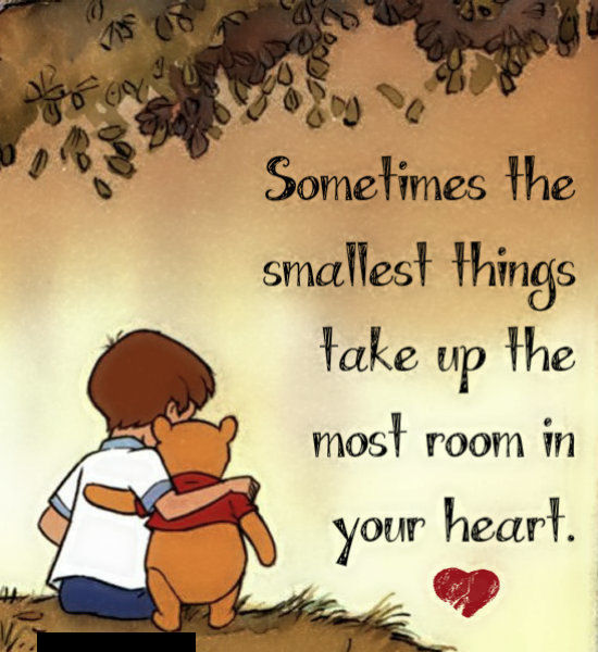 Winnie The Pooh Quotes Sometimes The Smallest Things: The Smallest Things Take Up The Most Room In Your Heart