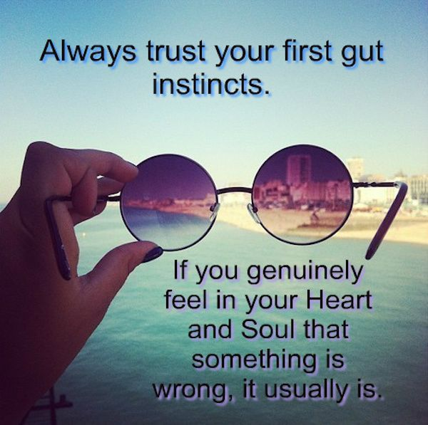Funny Friday Quotes Humor: Always Trust Your First Gut Instinct Pictures, Photos, And
