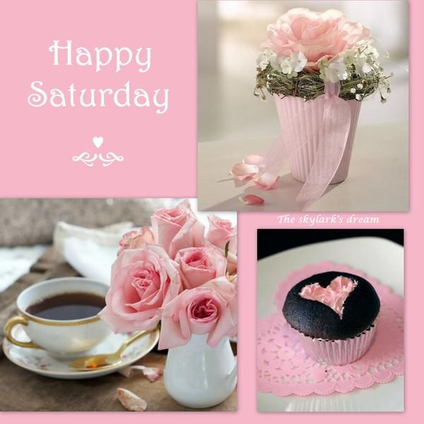 happy saturday pictures photos and images for facebook