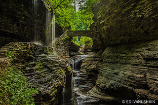 watkins glen state park new york pictures photos and