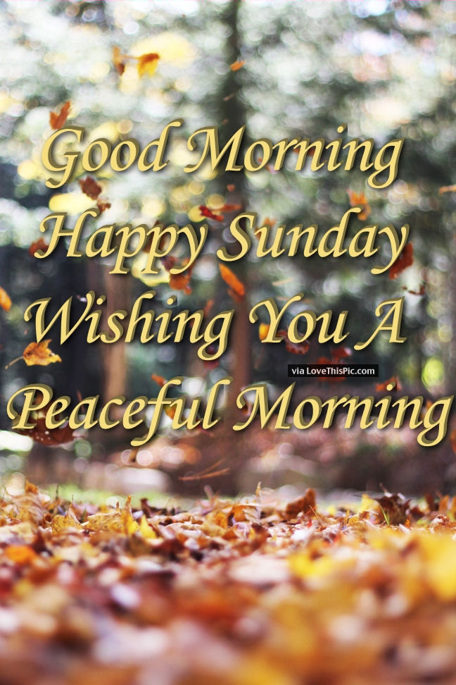 Good Morning Happy Sunday Peaceful Morning Pictures, Photos, And Images For  F..