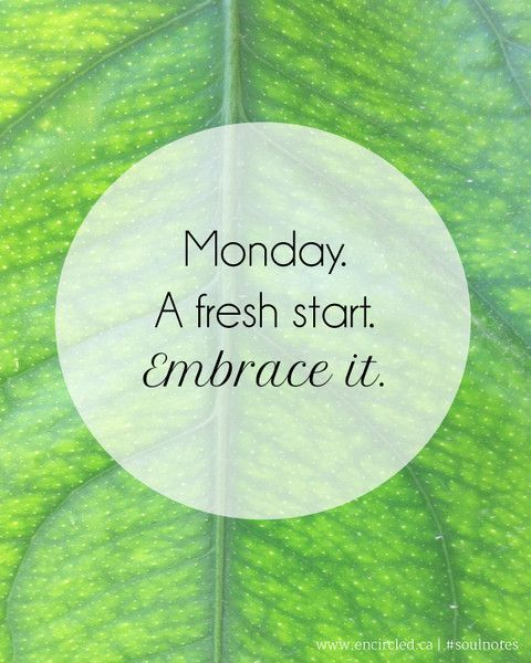 Fresh Start Quotes: Monday A Fresh Start Pictures, Photos, And Images For