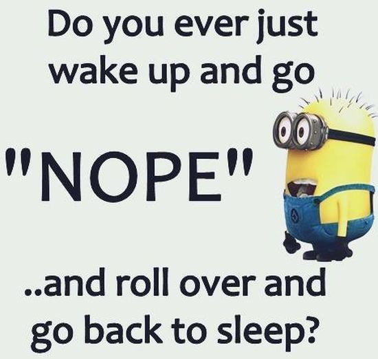 Funny Love Quotes And Sayings With Images: Nope I Am Sleeping Pictures, Photos, And Images For