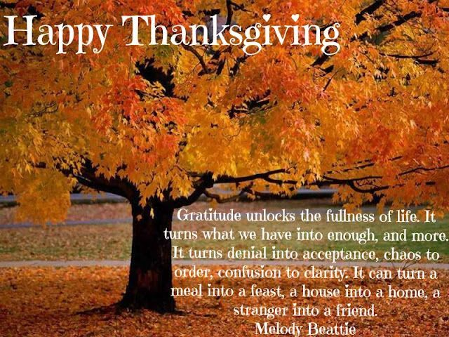 Nice Happy Thanksgiving Gratitude Quote