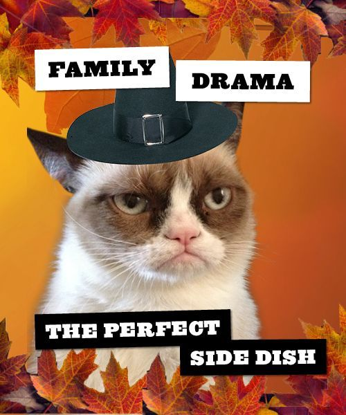 Grumpy Cat Funny Thanksgiving Quote About Family Pictures, Photos, and ...