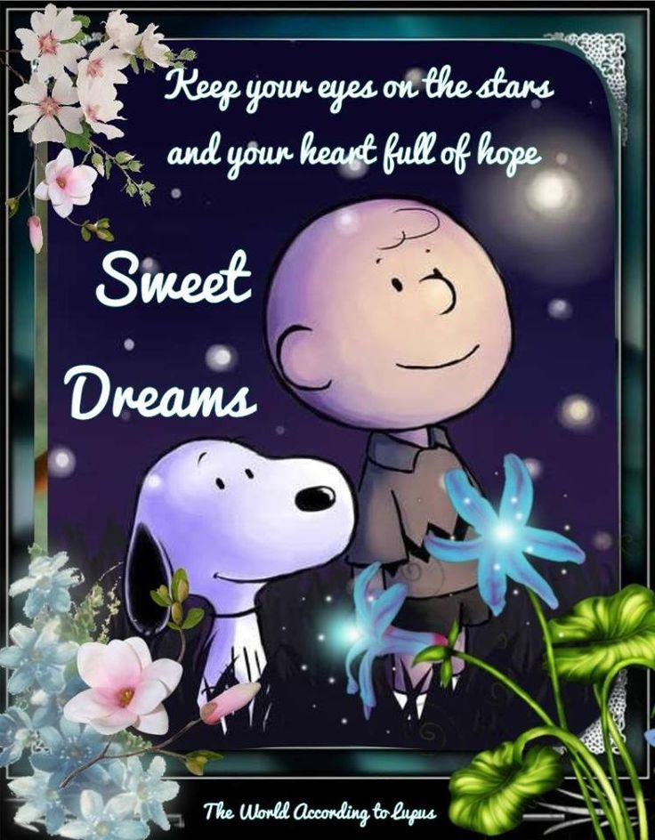 snoopy sweet dreams goodnight quote