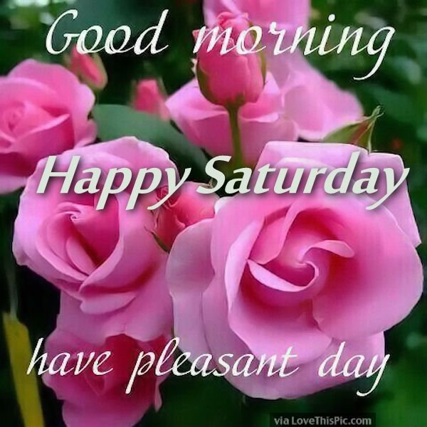 Good Morning Happy Saturday Have A Pleasant Day Pictures Photos And Images For Facebook