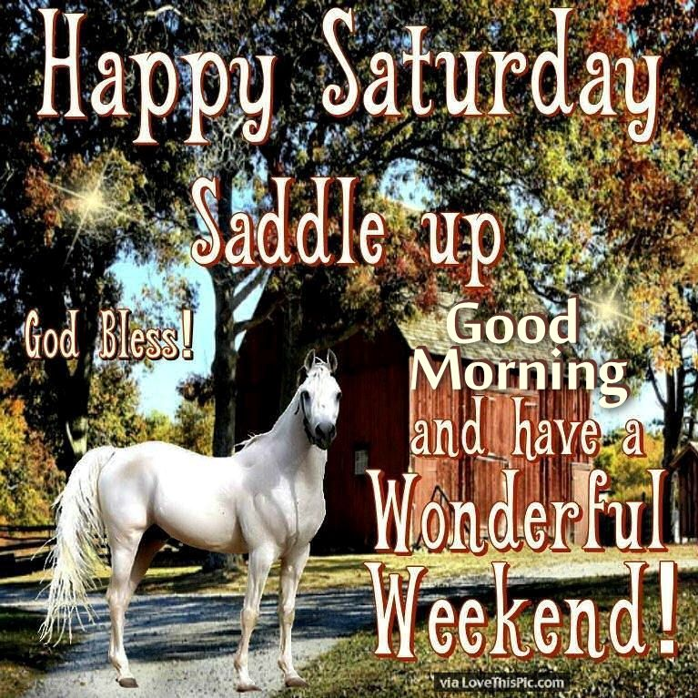 Good Morning Saturday Have A Wonderful Weekend : Happy saturday good morning have a wonderful weekend
