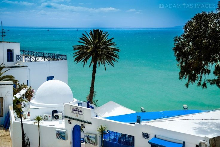 Sidi Bou Said Tunisian Version Santorini