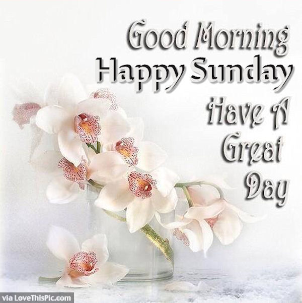 Good Morning Happy Sunday Image Pictures Photos And