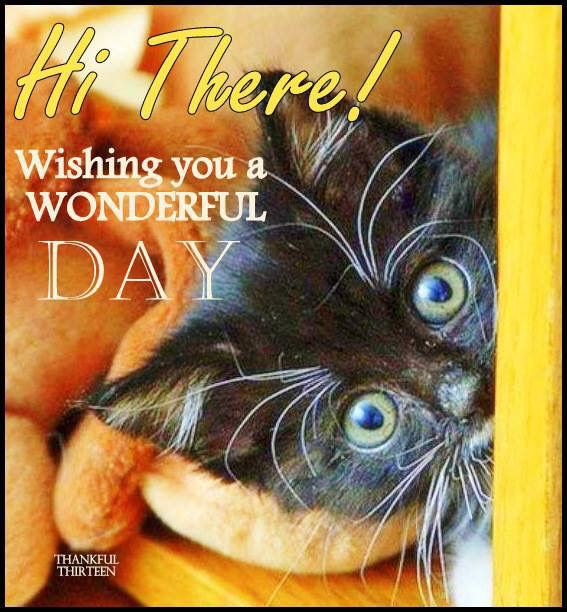 Have A Wonderful Day Kidztalk