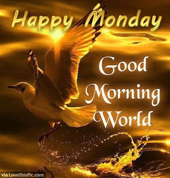 Happy monday good morning world pictures photos and for World good images