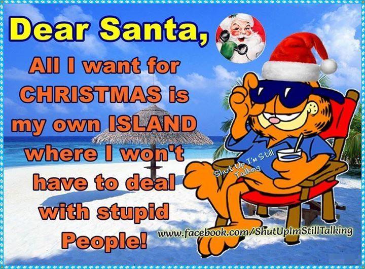 Dear Santa All I Want From Christmas Is My Own Island
