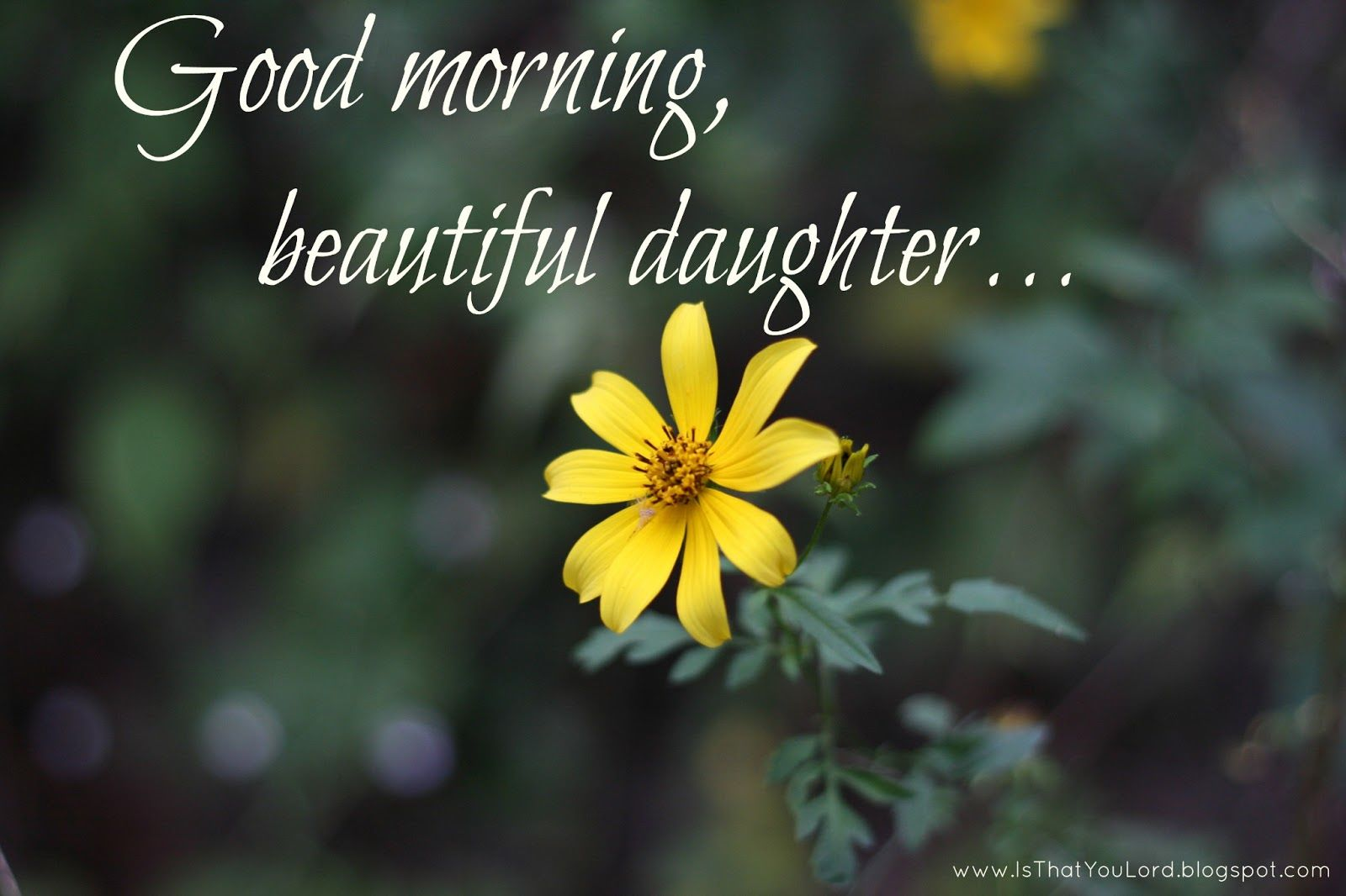 Good morning beautiful daughter pictures photos and images for good morning beautiful daughter izmirmasajfo