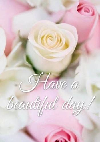 Have A Beautiful Day Pictures, Photos, and Images for ...  Good Morning Handsome Quotes Tumblr