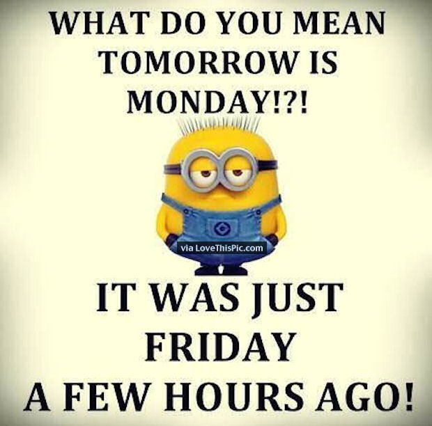 Funny Tomorrow Is Monday Meme : What do you mean tomorrow is monday pictures photos and