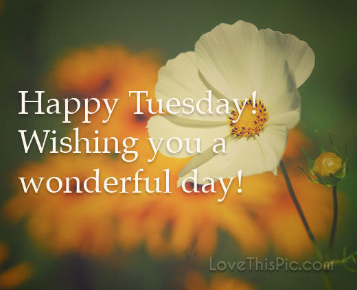 Pinterest Happy Quotes: Happy Tuesday Pictures, Photos, And Images For Facebook