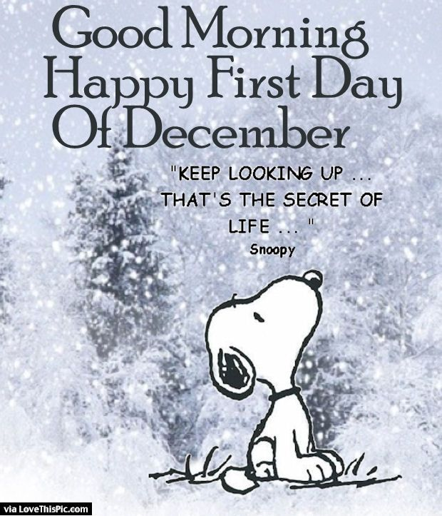 Good Good Morning Happy First Day Of December Pictures, Photos, And Images For  Facebook, Tumblr, Pinterest, And Twitter
