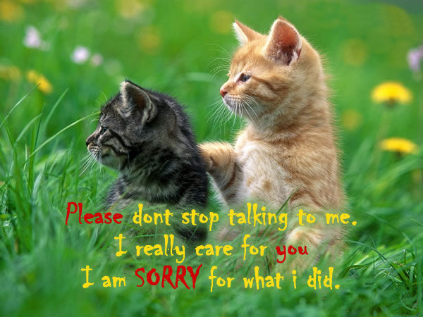 I Really Care I Am Sorry For What I Did Pictures, Photos