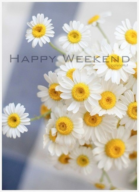 Pretty Happy Weekend Quote Pictures, Photos, and Images