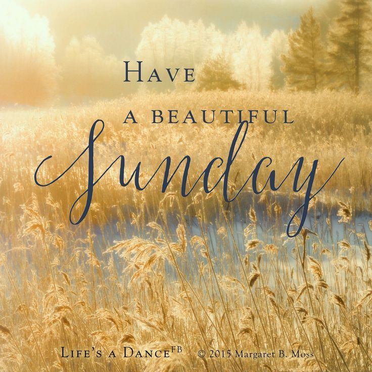 Have A Beautiful Sunday Pictures Photos And Images For