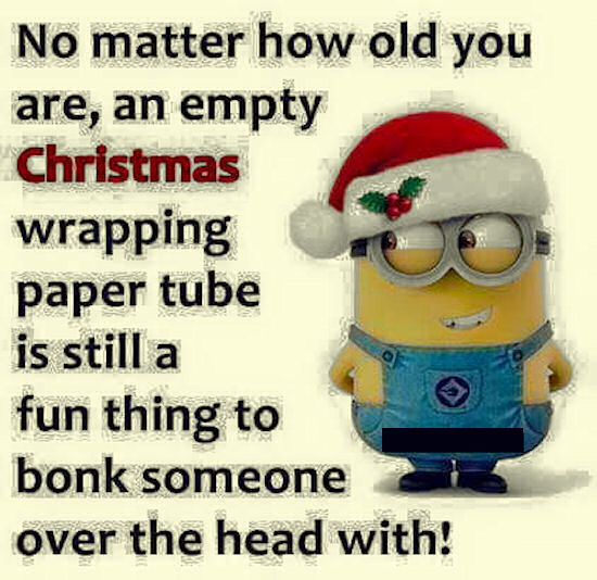 Funny Christmas Pic Quotes: Funny Minion Quote About Christmas Pictures, Photos, And
