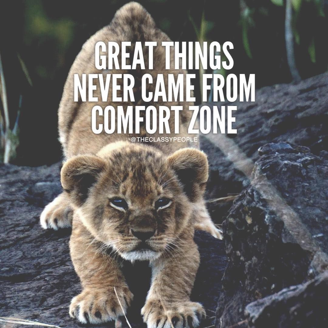 Great Life Quotes And Sayings Great Things Never Came From Comfort Zone Pictures Photos And