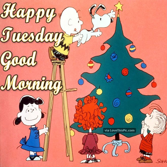 Christmas Good Morning Quotes: Christmas Tuesday Good Morning Quote Pictures, Photos, And