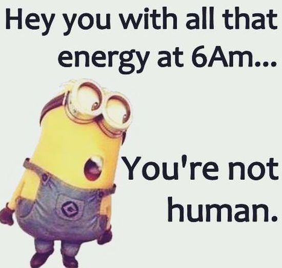 Good Morning Funny Quotes: Hey You With All That Morning Energy You Arent Human